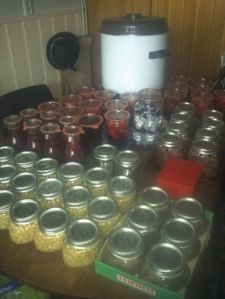 canning week 32-33